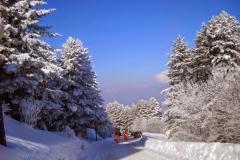 skijanje-na-pelister_14