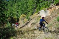 velosipedizam-na-pelister (10)