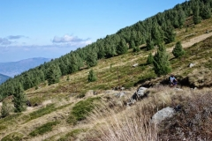 velosipedizam-na-pelister (22)